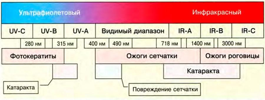 повреждающее действие светового излучения на глаза, в зависимости от длины волн.